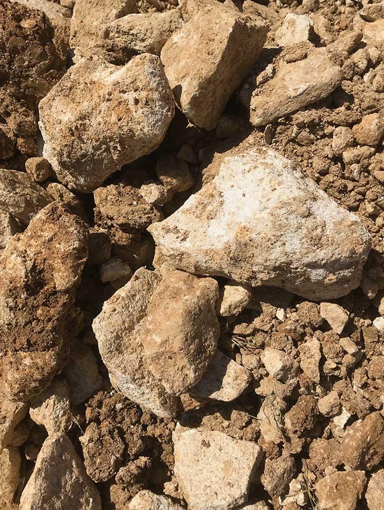 terroir marno calcaire vue 2