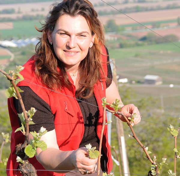 walk in the vineyards with Muriel