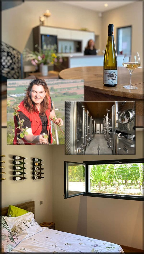 vip wine tourism offer