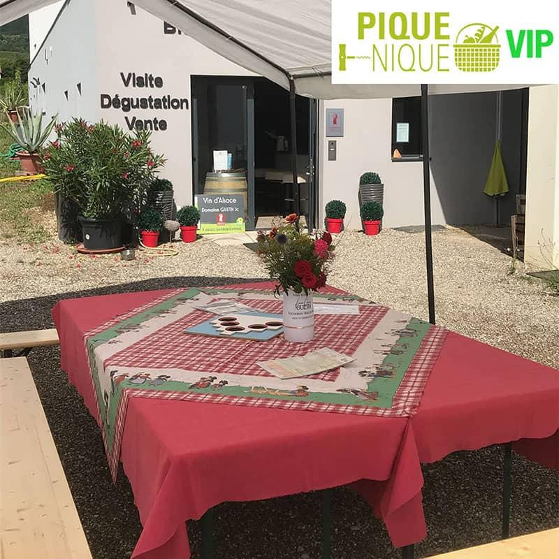 Tonnelle table banc pique nique VIP4