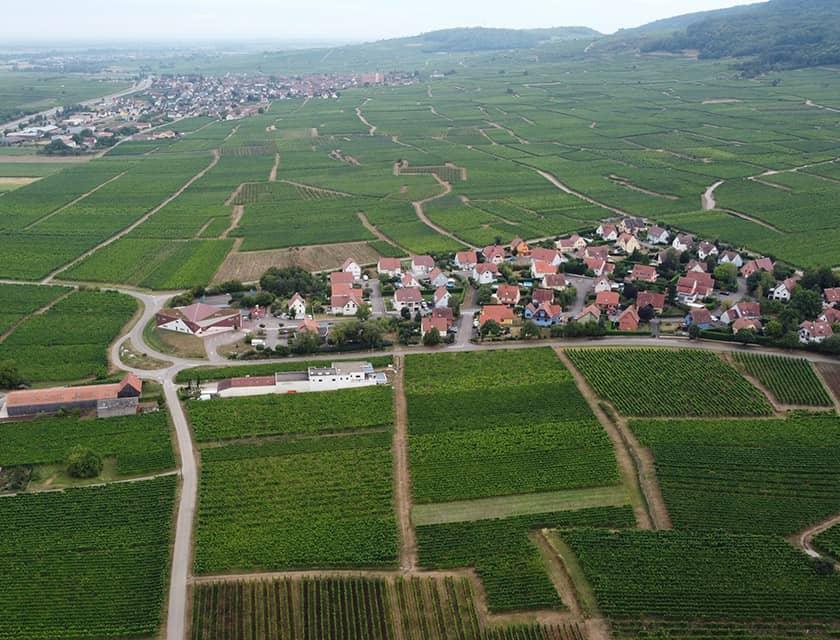 Domaine GUETH - Vins d'Alsace et oenotourisme