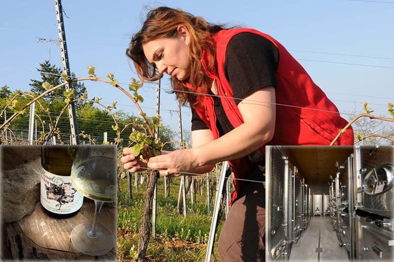 Osez et découvrez le vin au féminin fascinant WE 2021 rev.2