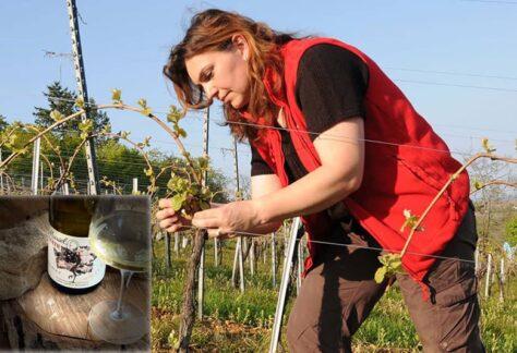Osez et découvrez le vin au féminin rev.1